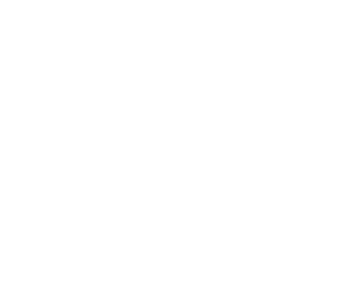 teren schi